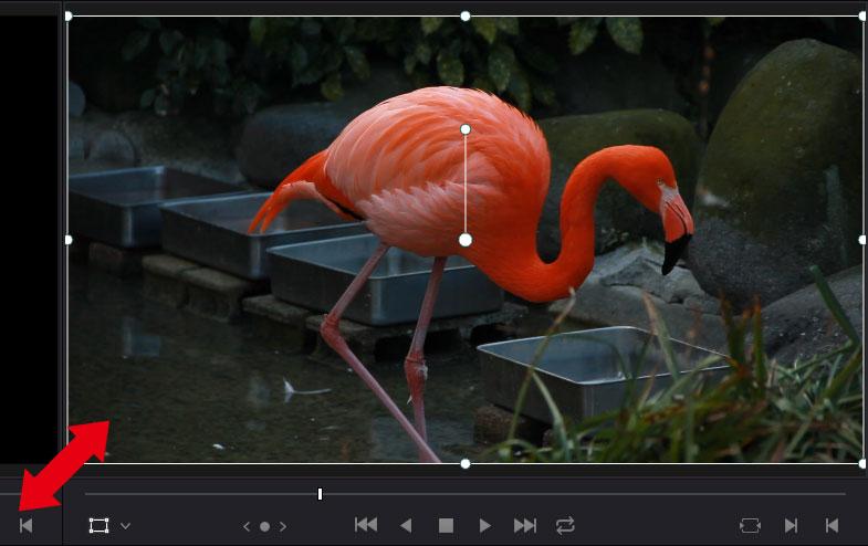 DaVinci Resolve:トランスフォームから動画を拡大。